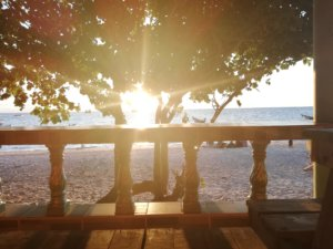 タオ島のリゾート