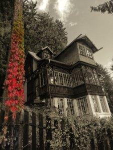 赤い葉っぱと廃屋