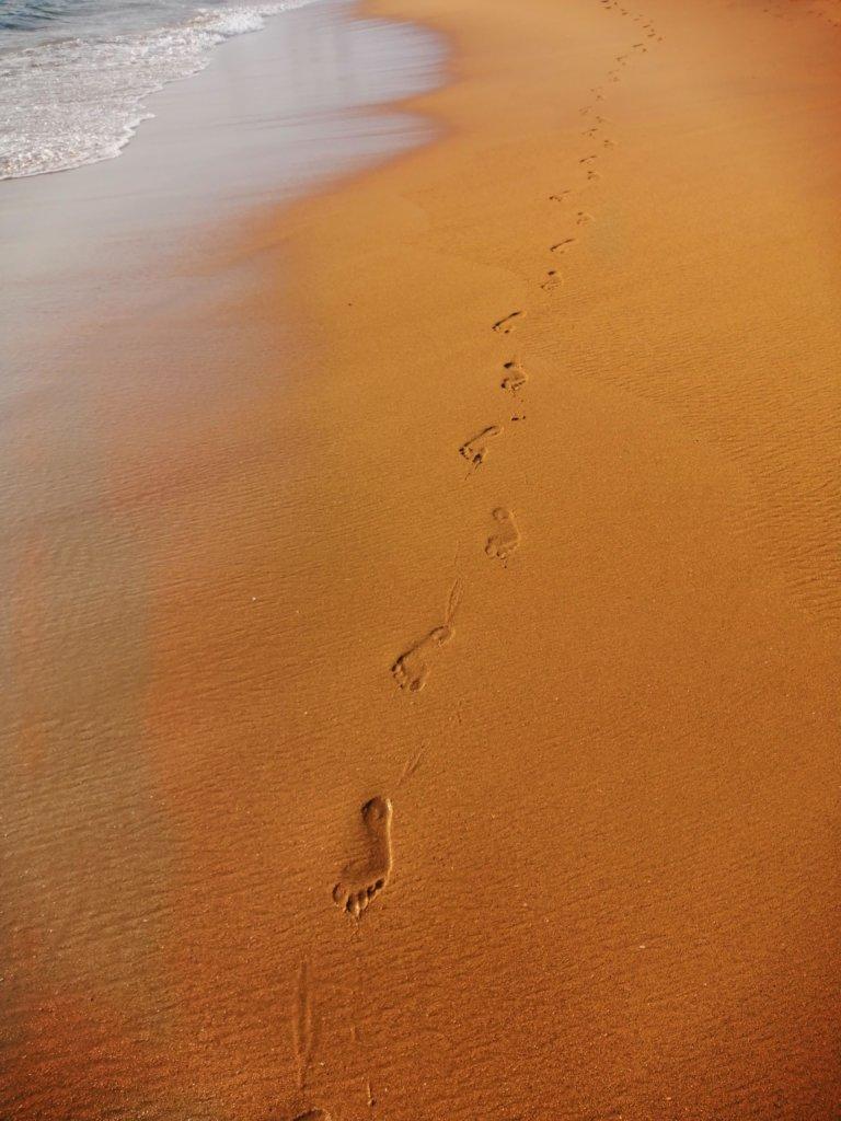 茶色い砂浜に一人分の足跡