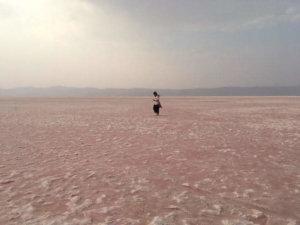 一面のピンク色の塩湖