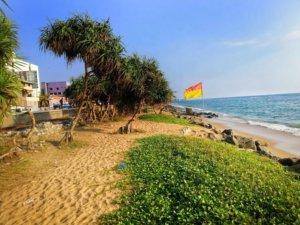 砂の海岸線になびく旗