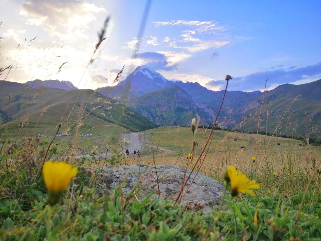 コーカサスの山々と黄色い花