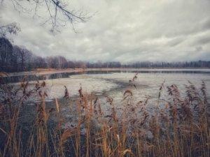 水不足の湖