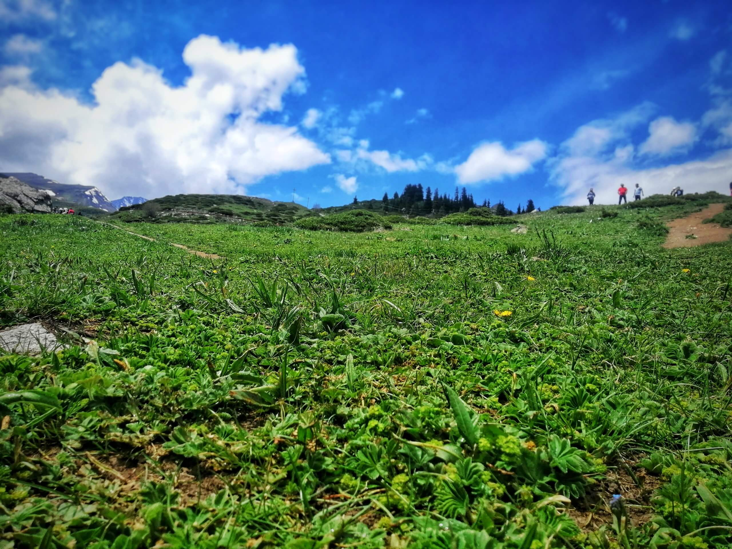 キルギスの草原