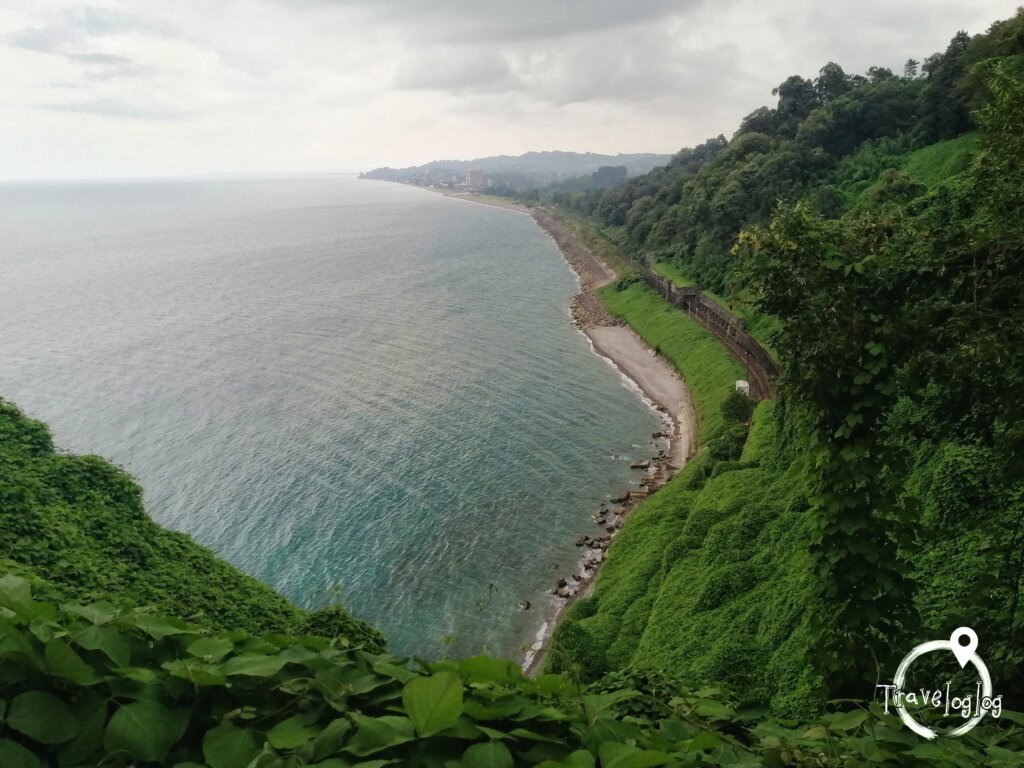 バトゥミ:海岸線と森の木々